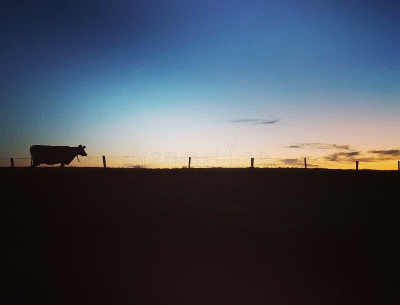 Una puesta del sol sola fotos de archivo