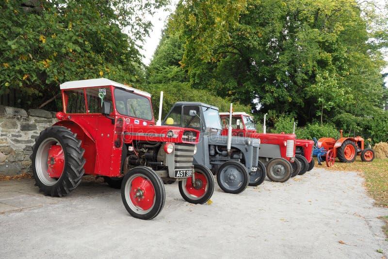 Una raccolta di quattro vecchi trattori di Massey Ferguson fotografie stock