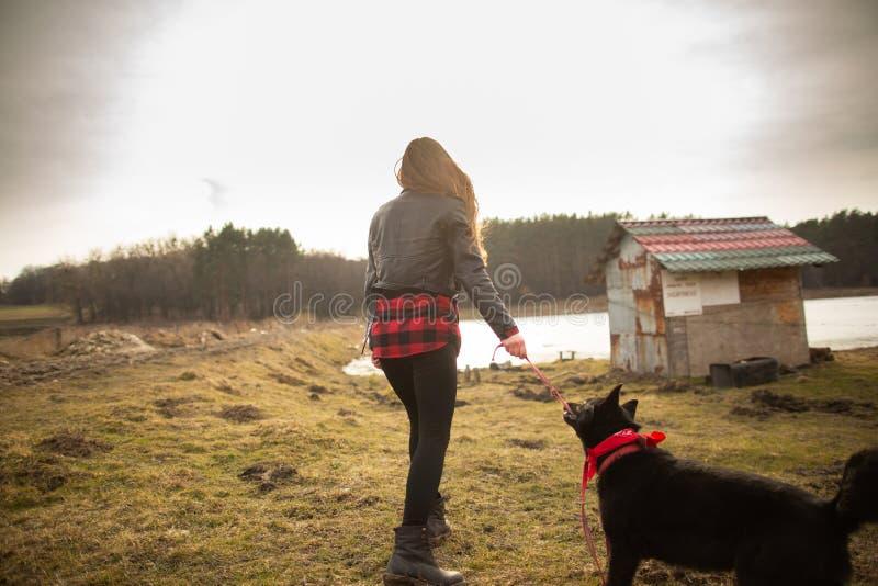 Una ragazza cammina con il suo cane sulla riva di un lago Vista posteriore fotografia stock libera da diritti