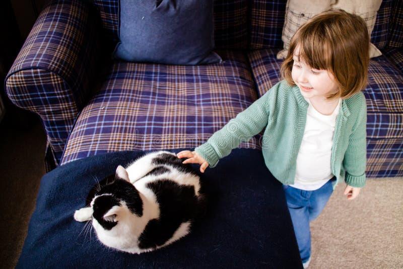 Una ragazza che prova a segnare un gatto dell'animale domestico fotografia stock