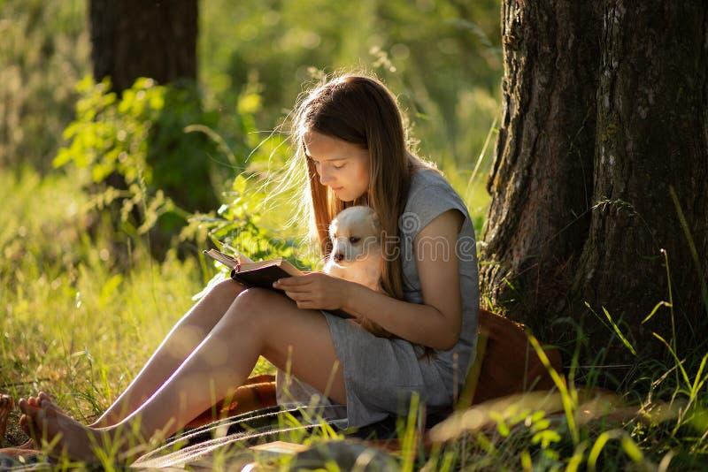 Una ragazza che si siede vicino ad un albero e che legge un libro, tenente un cucciolo di labrador Al tramonto nella foresta di e immagini stock libere da diritti