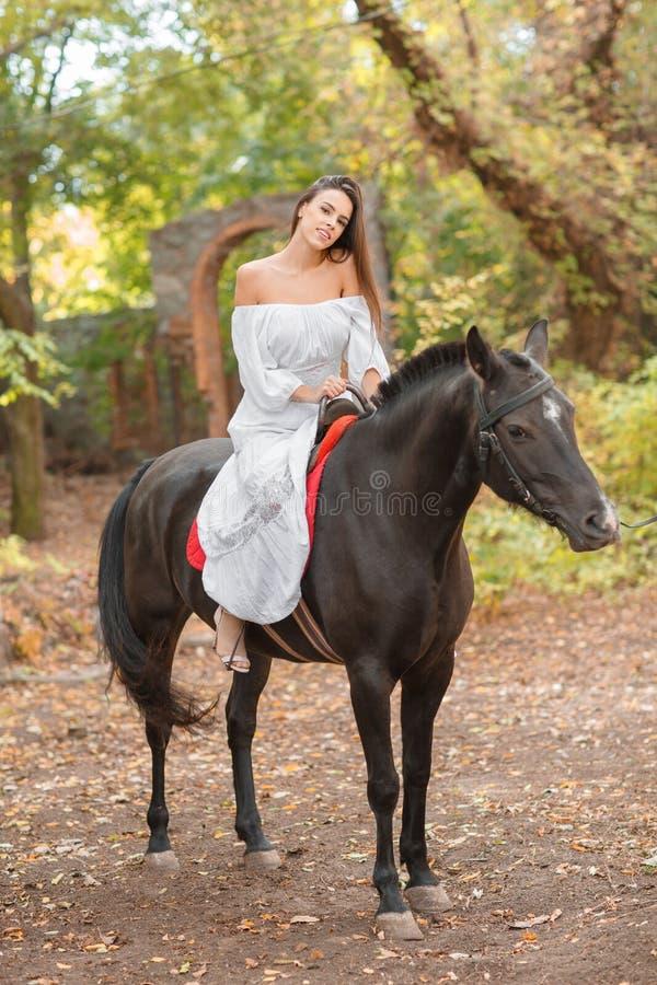 Una ragazza europea sta montando un cavallo nero Nel parco di autunno in buon tempo fotografie stock