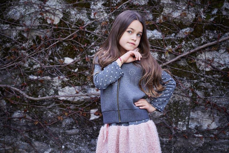Una ragazza in una gonna e maglia con cappuccio su fondo grigio immagine stock