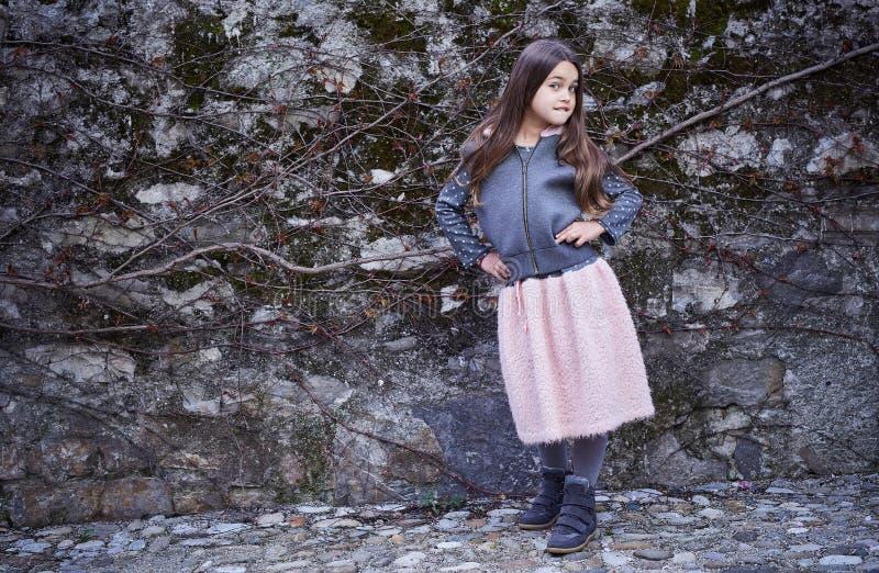 Una ragazza in gonna rosa e rivestimento grigio sul fondo congelato della roccia immagini stock libere da diritti