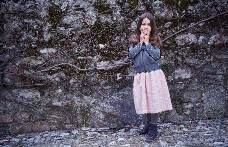 Una ragazza in gonna rosa e rivestimento grigio sul fondo congelato della roccia fotografie stock libere da diritti