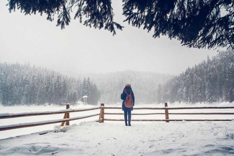Una ragazza sta avendo una passeggiata attraverso una foresta spessa durante il bello giorno di inverno fotografia stock