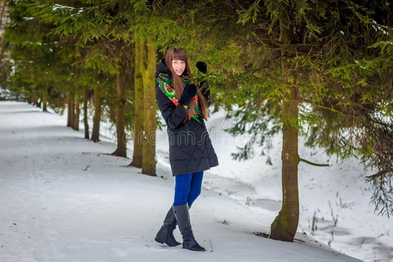 Una ragazza sta camminando nel legno nell'inverno fotografie stock