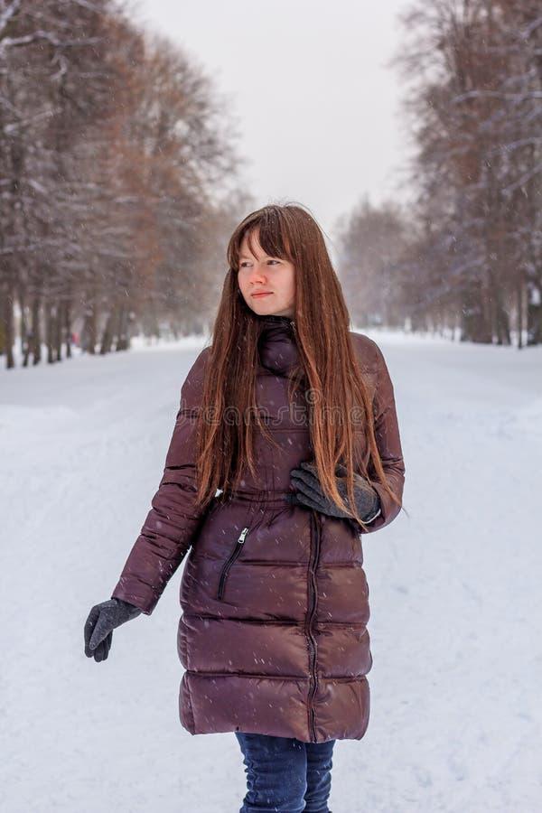 Una ragazza sta camminando nel parco nell'inverno fotografia stock libera da diritti