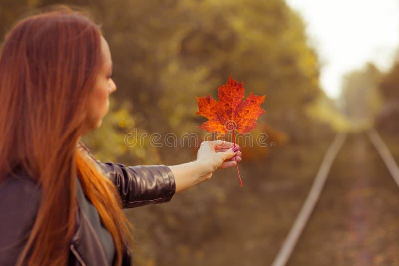 Una ragazza tiene una foglia di acero in una foresta di autunno fotografia stock