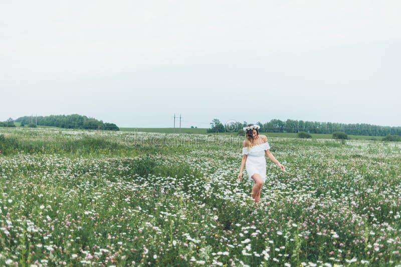 Una ragazza in un campo delle camomille immagini stock libere da diritti