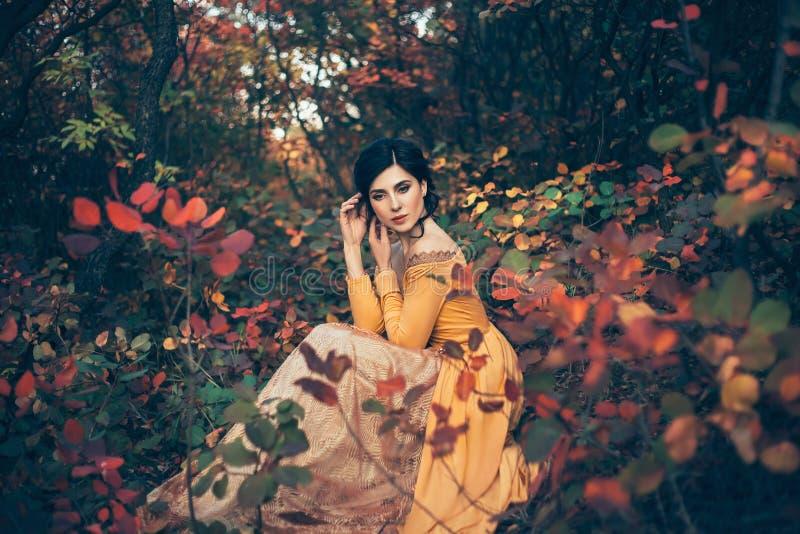 Una ragazza in un vestito d'annata immagine stock
