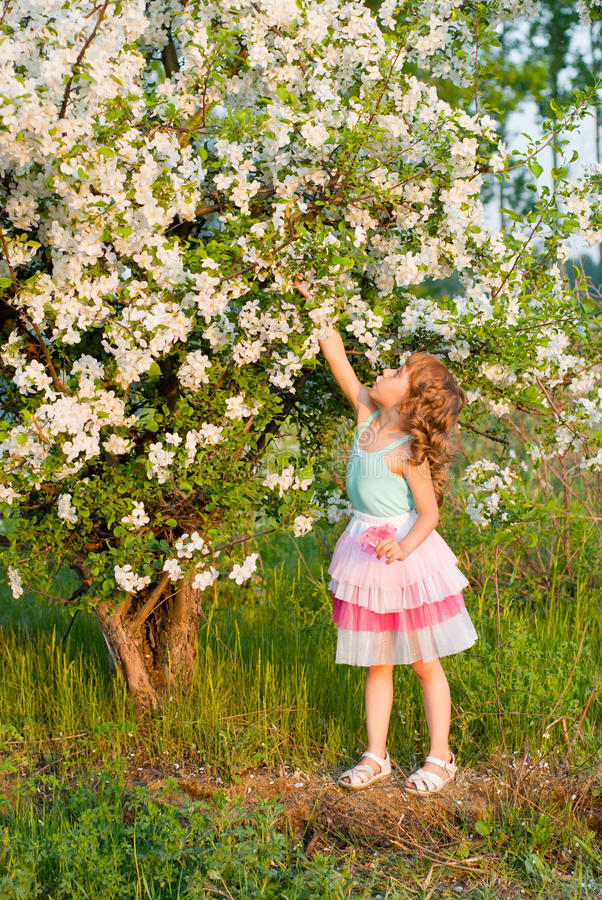 Una ragazza vicino ad un albero di fioritura immagine stock