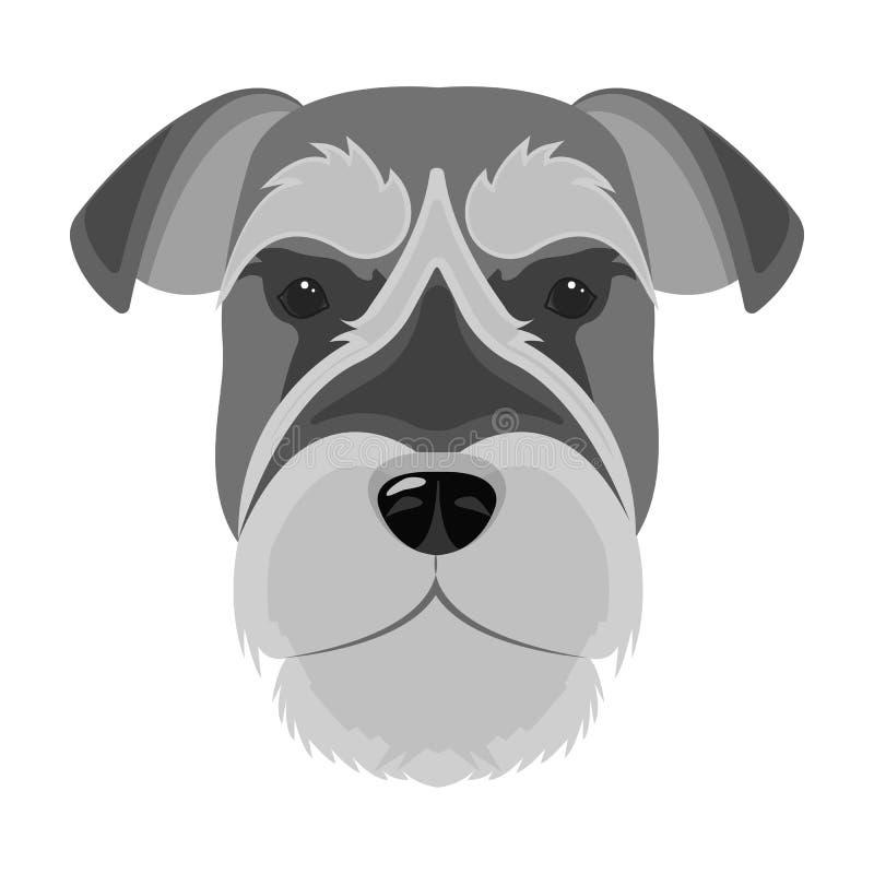 Una raza de un perro, un schnauzer subido Icono subido del bozal del Schnauzer solo en la acción monocromática del símbolo del ve stock de ilustración