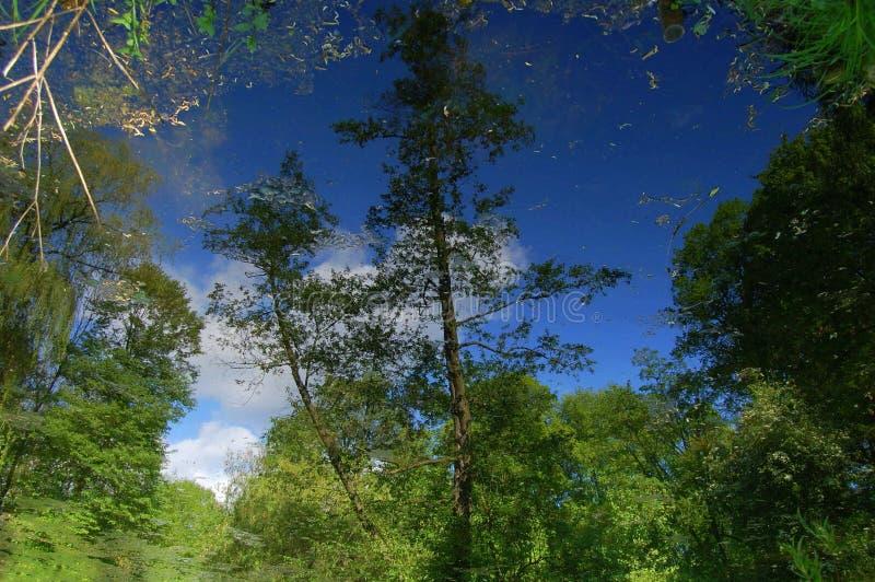 una riflessione è in acqua fotografia stock libera da diritti