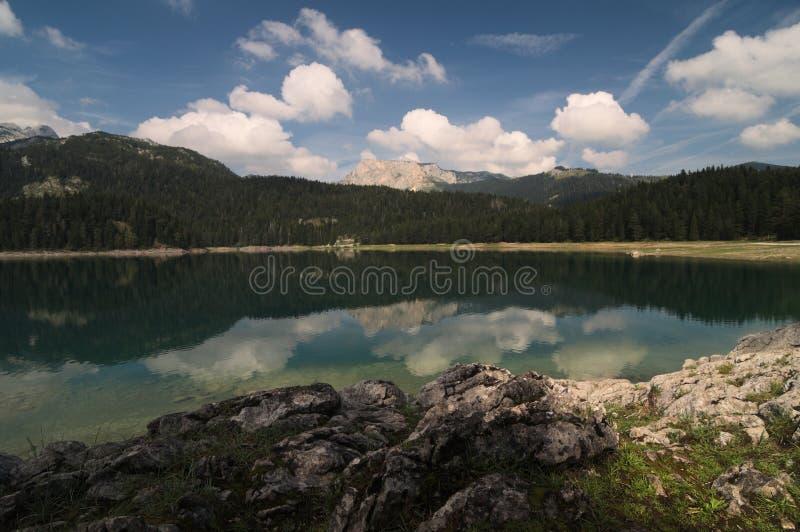 Una riflessione dell'acqua nel jezero di Crno, Montenegro immagini stock libere da diritti
