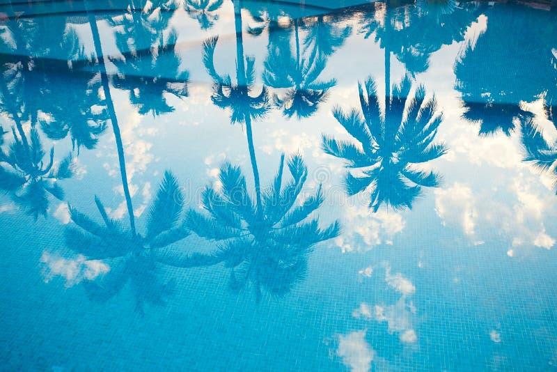 Una riflessione dello stagno in un paradiso tropicale fotografia stock libera da diritti