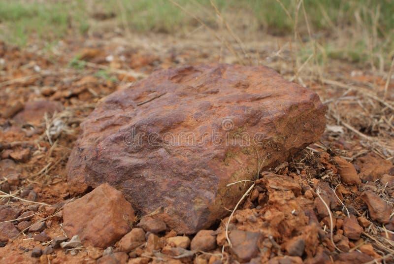 Una roca encontró en mi ganado lejano en Tejas del este imagenes de archivo