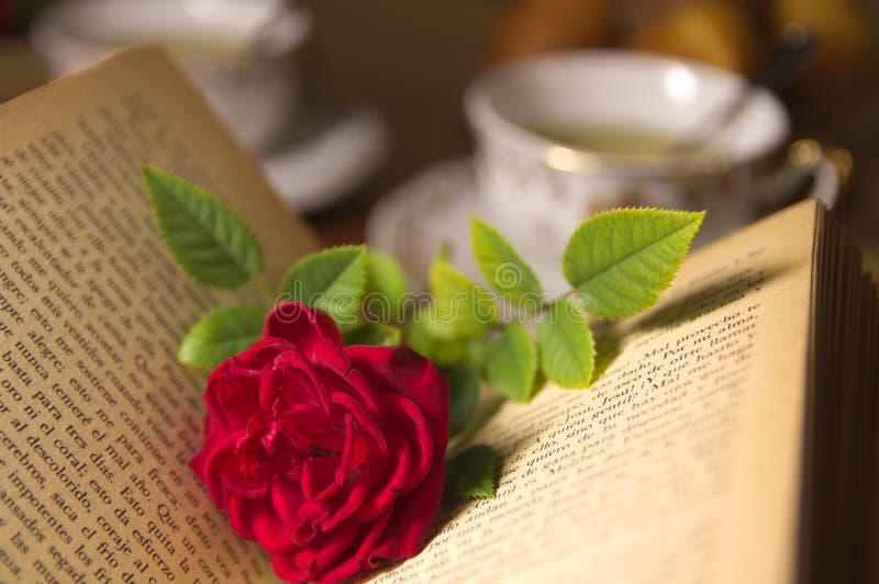 Una rosa roja en un libro viejo imagen de archivo