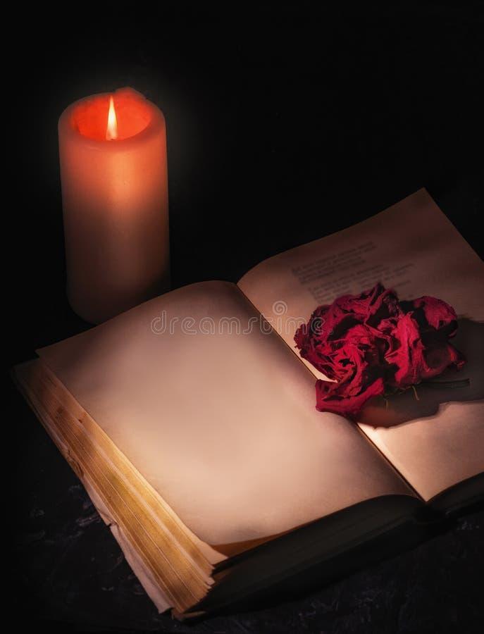 Una rosa roja marchitada, primer tirado, miente en las páginas de un libro abierto, al lado de quemaduras de una vela página en b imágenes de archivo libres de regalías