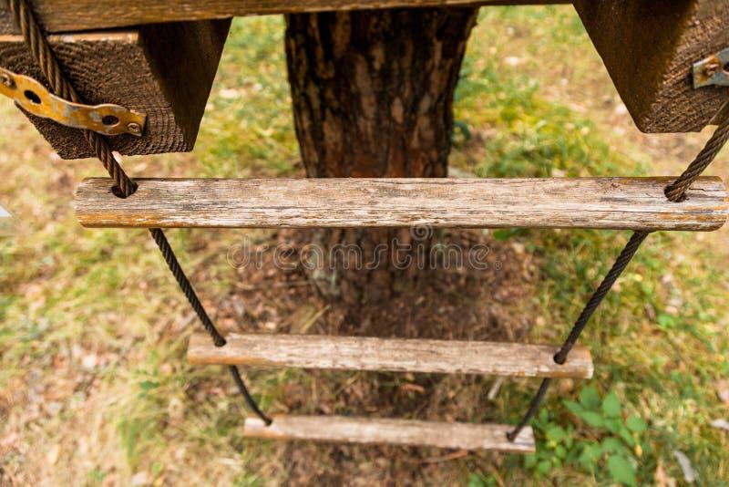 Una scala di corda su un albero immagini stock libere da diritti