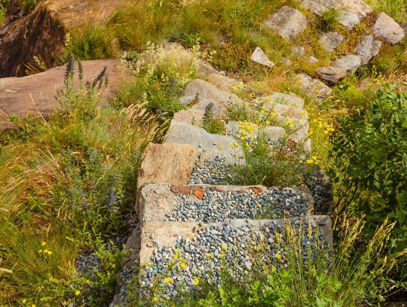 Una scala di pietra circondata da vegetazione e dai fiori selvaggi e coperta dai ciottoli fotografie stock