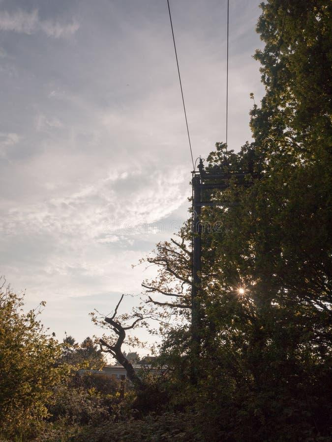Una scena di paese con un pilone ha sommerso con gli alberi fuori immagini stock