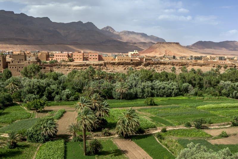 Una sección del oasis enorme de Tinerhir en Marruecos imagen de archivo