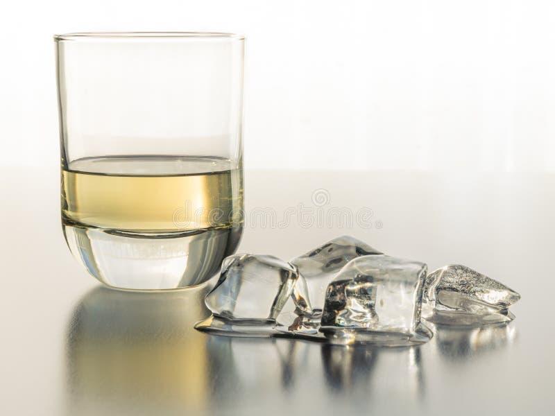 Una sed que apaga el vidrio de Tequila en las rocas foto de archivo libre de regalías