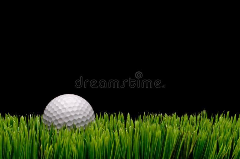 Una sfera di golf bianca in erba verde fotografia stock libera da diritti
