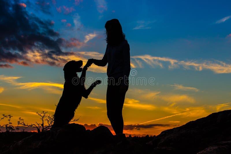 Una silueta de una mujer joven y de su perro del perro callejero imagen de archivo libre de regalías