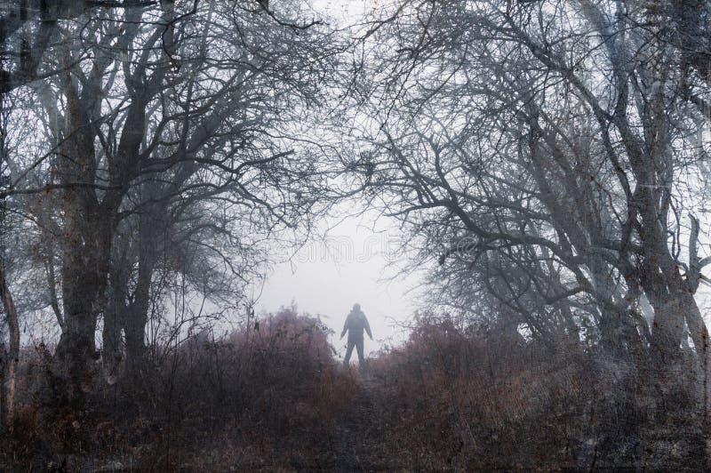 Una silueta fantasmagórica de una figura con los brazos extendidos, colocándose en un bosque de niebla de los inviernos con un gr fotografía de archivo