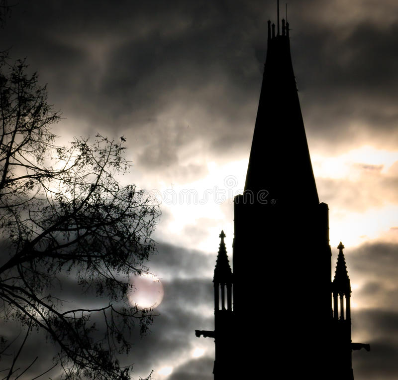 Costruzione gotica drammatica, luce della luna ed albero immagine stock libera da diritti