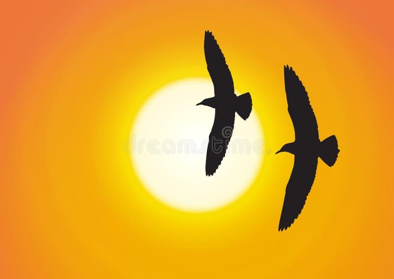 Una siluetta di un volo di due gabbiani sul fondo dorato di tramonto illustrazione di stock
