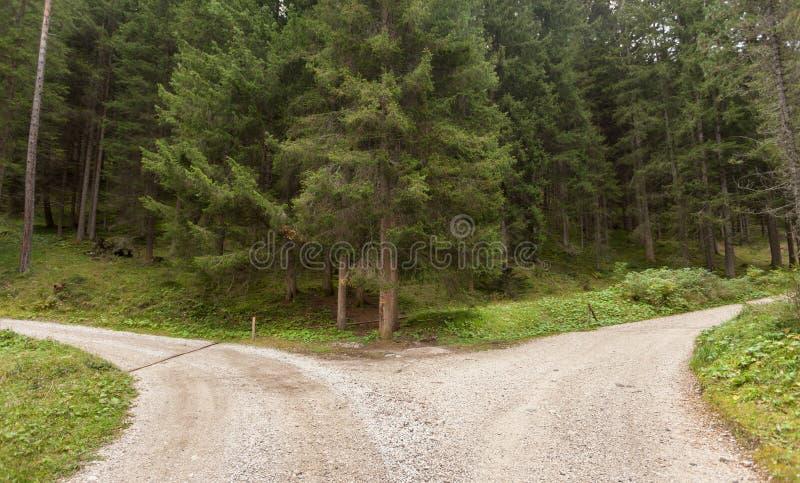 Una singola strada della montagna spacca in due direzioni differenti ` s fotografie stock