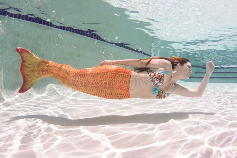 Una sirena con e una coda arancio subacquea fotografie stock