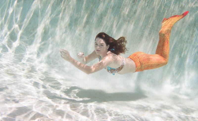 Una sirena con e una coda arancio subacquea immagine stock libera da diritti
