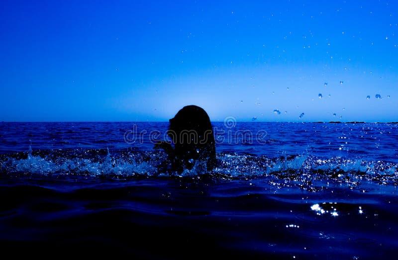 Una sirena emerge del mar y del x28; 18& x29; foto de archivo libre de regalías