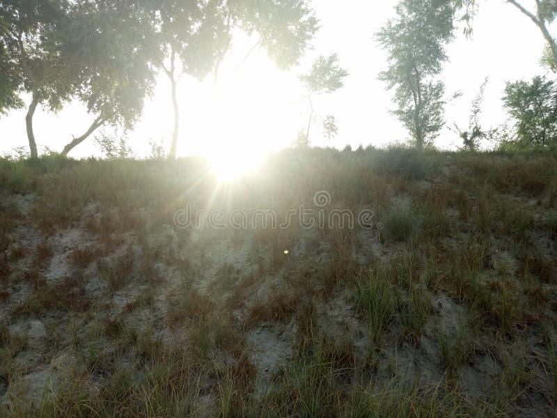 Una sol hermosa imagen de archivo libre de regalías