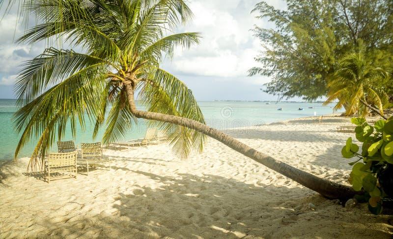 Una spiaggia da sette miglia sull'isola di Grand Cayman, Isole Cayman immagine stock libera da diritti