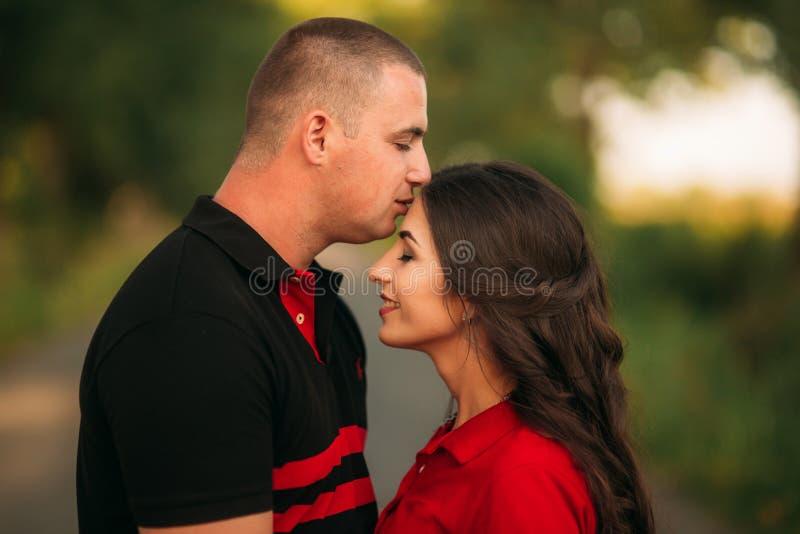 Una storia di amore in una foresta leggiadramente con un tipo e una ragazza La bacia forehaed fotografia stock libera da diritti