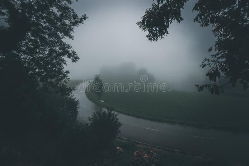 Una strada asfaltata che passa attraverso una foresta misteriosa scura nebbiosa fotografia stock libera da diritti