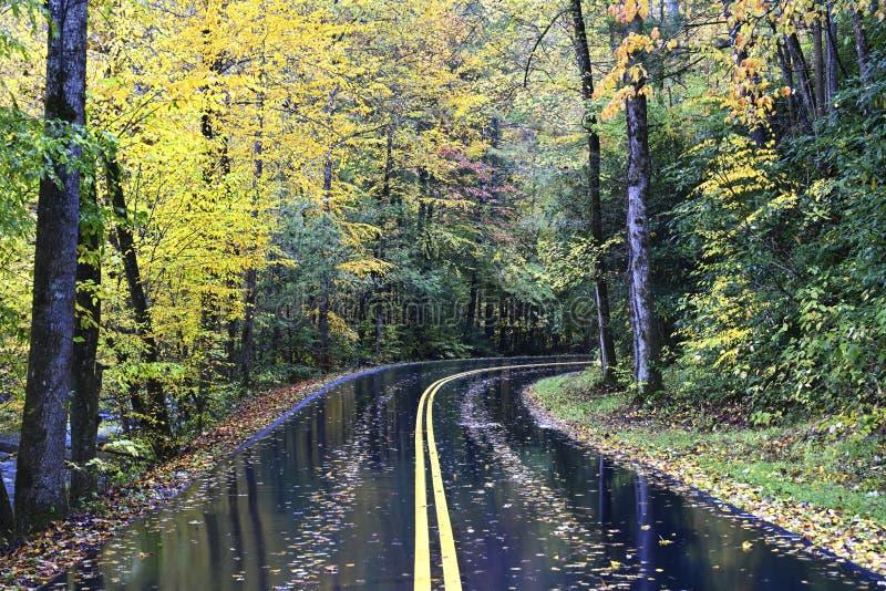 Una strada di autunno in Great Smoky Mountains, Tennessee, U.S.A. fotografia stock