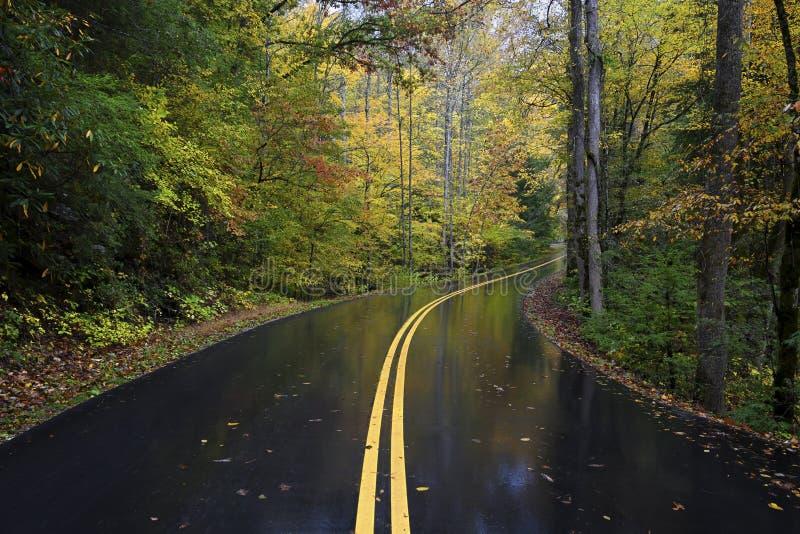Una strada di autunno in Great Smoky Mountains, Tennessee, U.S.A. fotografia stock libera da diritti