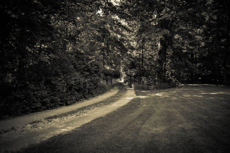 Una strada non asfaltata in bianco e nero immagine stock