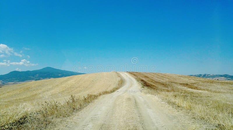 Una strada non asfaltata in mezzo ad un giacimento di grano immagine stock