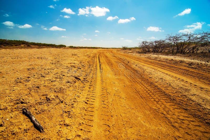 Una strada non asfaltata nel deserto fotografia stock
