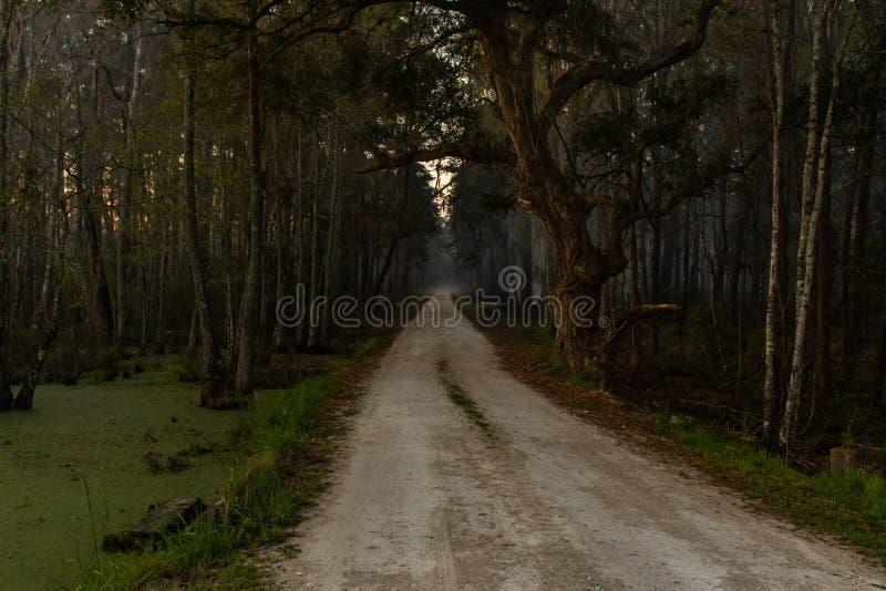 Una strada per Eerie e Ominous immagini stock libere da diritti