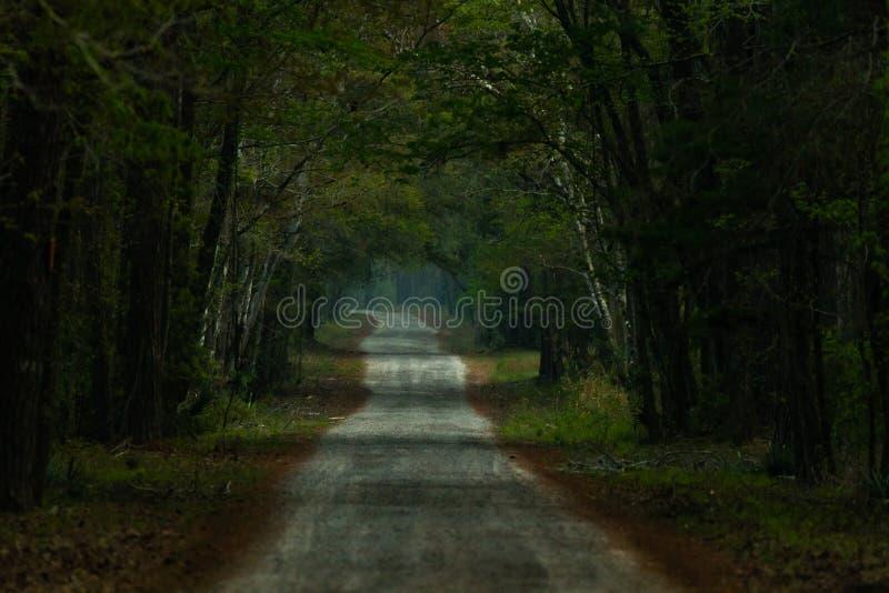 Una strada per Eerie e Ominous immagini stock