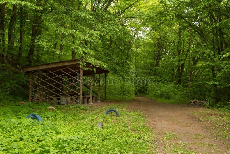 Una struttura di legno leggera in una foresta densa in un giorno piovoso immagini stock