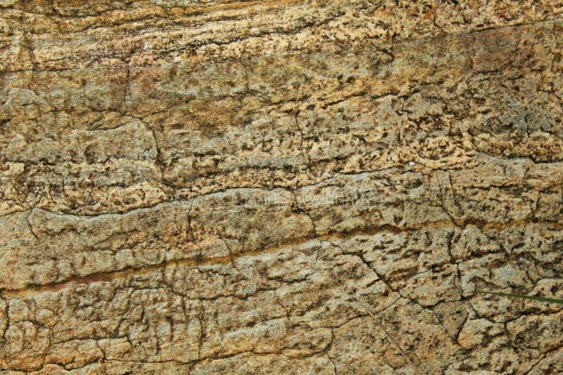 Una struttura naturale differente di progettazione dello sfondo naturale di struttura incrinata della roccia immagini stock